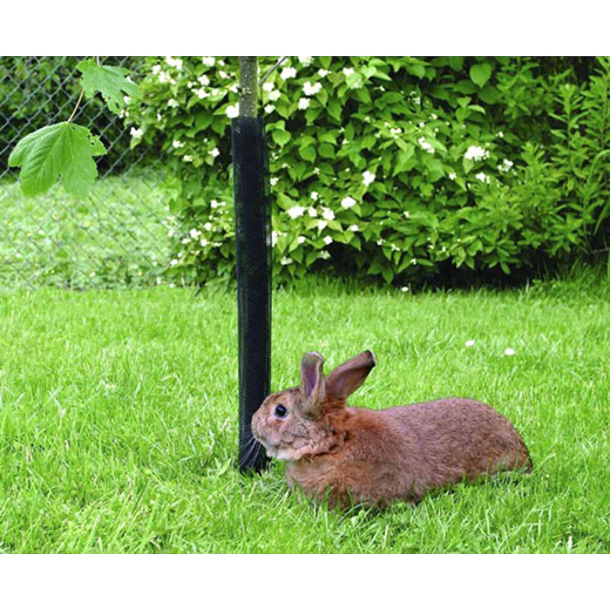 Facsemete védőrács 6cm/100cm barna
