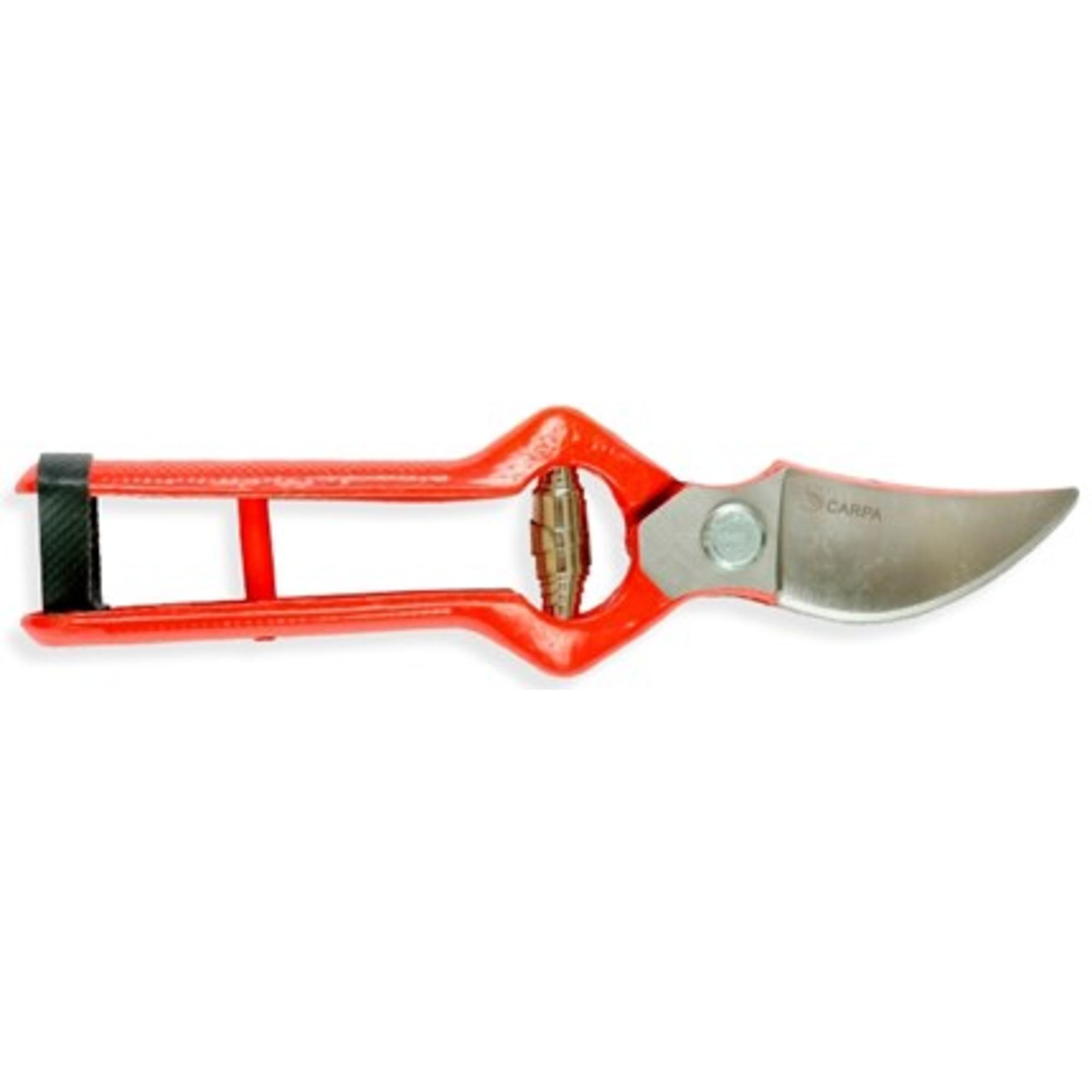 Metszőolló kovácsolt Carpa 21cm 1121976