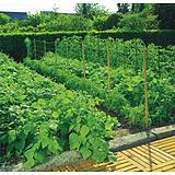 Nortene TRELLINET PP (Sz-120/12) növénytartó háló BOP181/12C - 1,2 x 500 m -  100 x 100 - 2002892