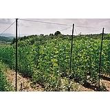 Nortene TRELLINET PP (Sz-120/8) növénytartó háló - 1,2 x 10 m -  150 x 150 - színtelen - 120242