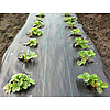 Agroszövet 100 g/m2 Fekete 105cmx100m