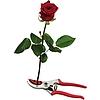 FELCO 4CH Rózsa és virágolló