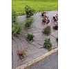Nortene WEEDSOL 90 g szőtt talajtakaró agroszövet - 1,25 x 10 m  -  zöld/fekete - 2014838